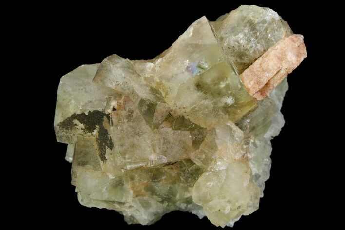 "1.8"" Light-Green, Cubic Fluorite Crystal Cluster - Morocco"